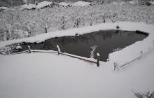 Der Teich im Winter | The pond in winter | Il laghetto in inverno